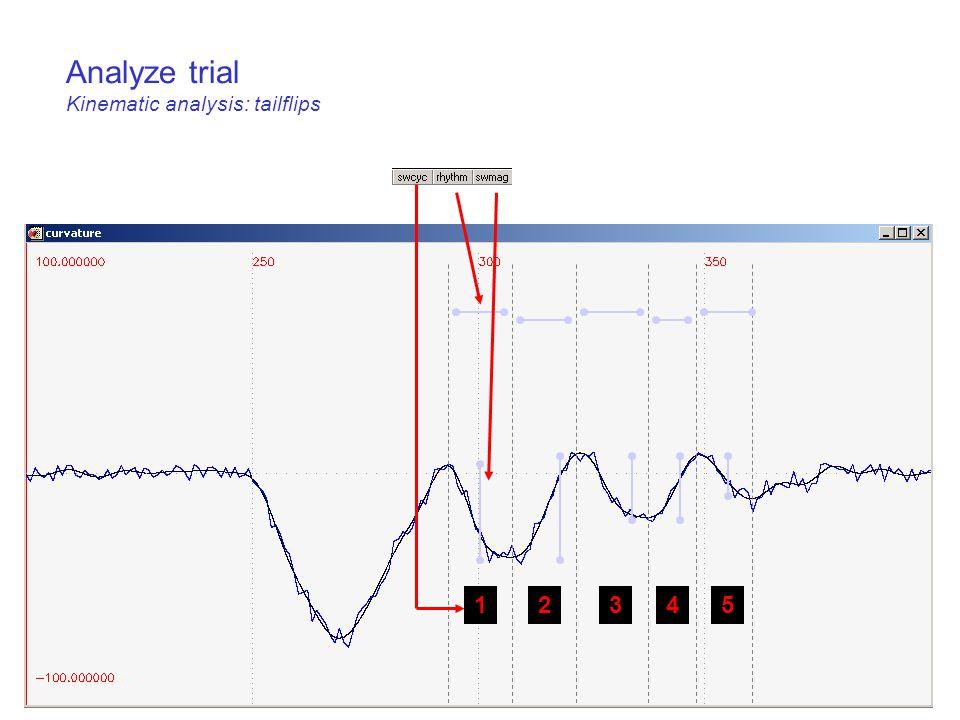Analyze trial Kinematic analysis: tailflips