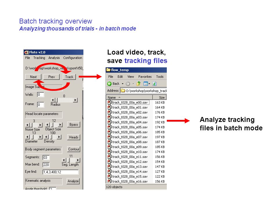 Batch tracking overview Analyzing thousands of trials - in batch mode