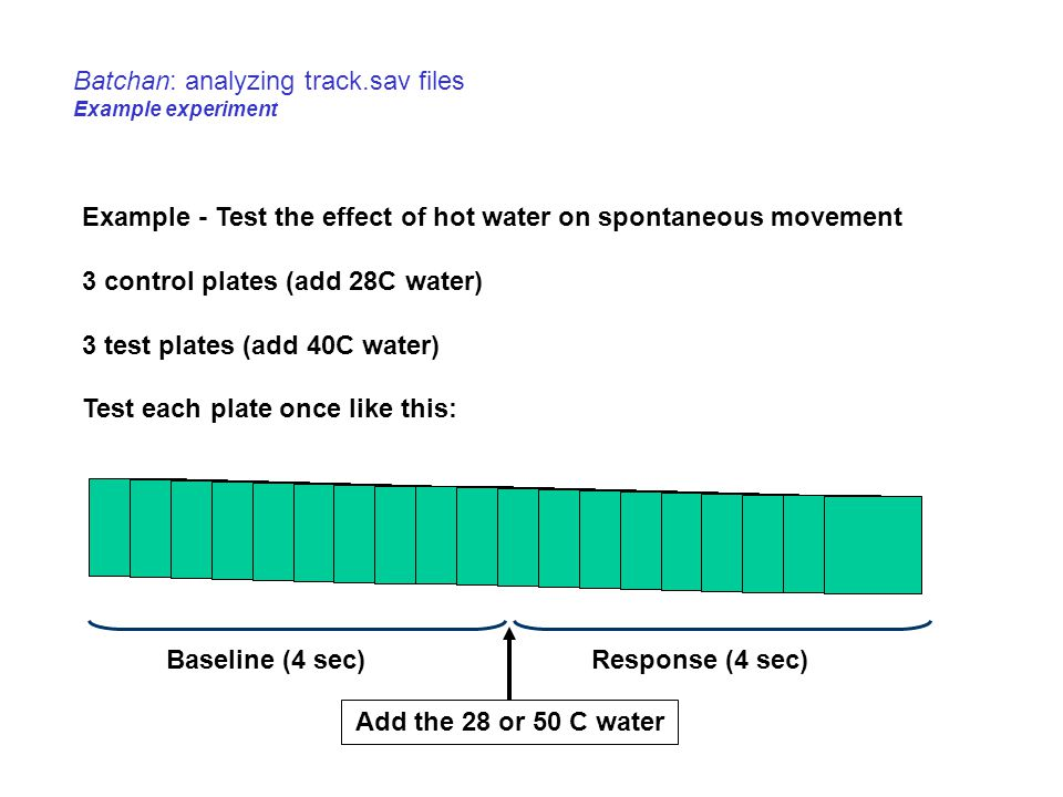 Batchan: analyzing track.sav files Example experiment