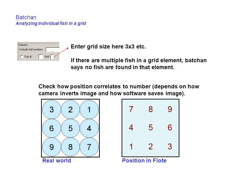 Batchan Analyzing individual fish in a grid