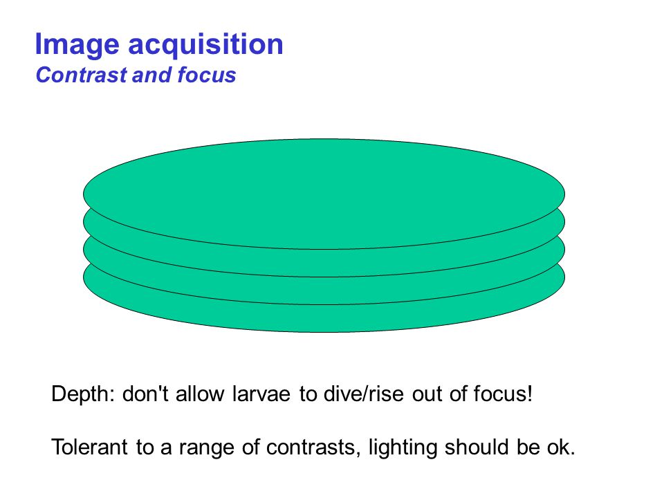 Image acquisition Contrast and focus