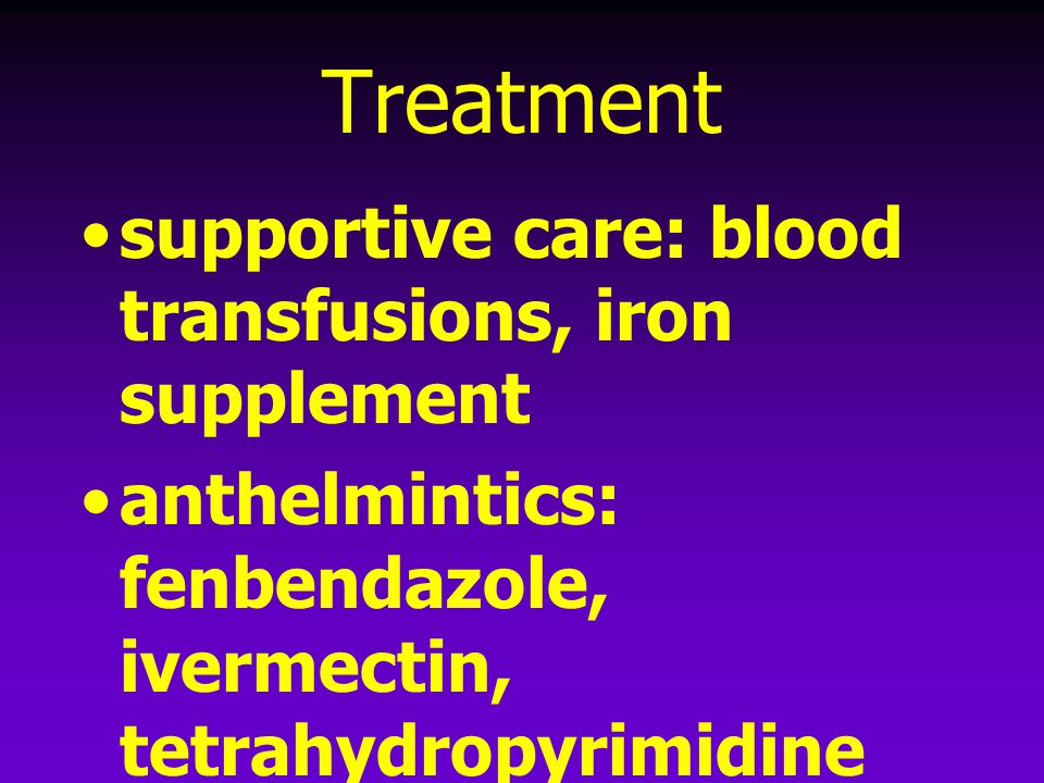 Treatment supportive care: blood transfusions, iron supplement