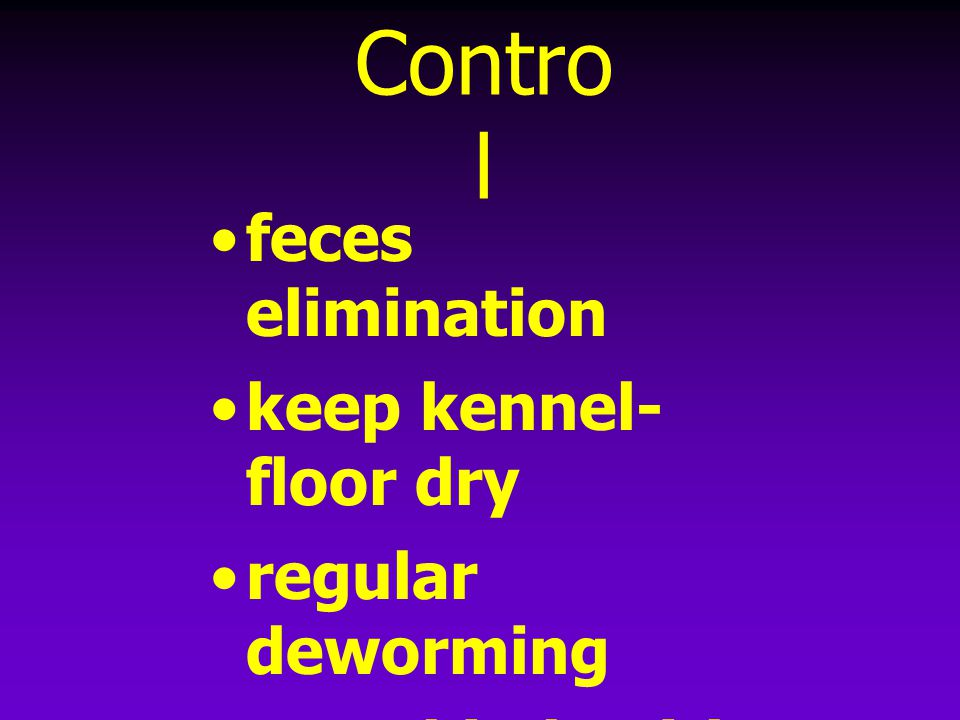 Control feces elimination keep kennel-floor dry regular deworming