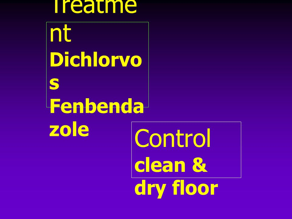 Treatment Dichlorvos Fenbendazole