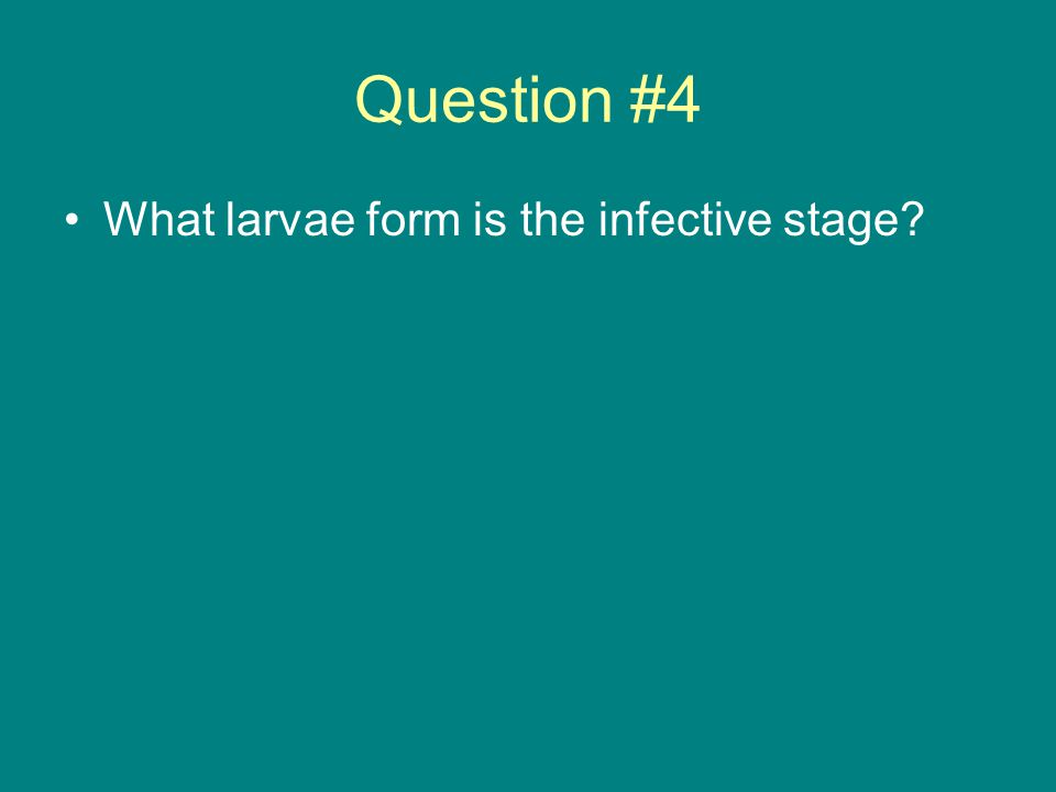 Question #4 What larvae form is the infective stage