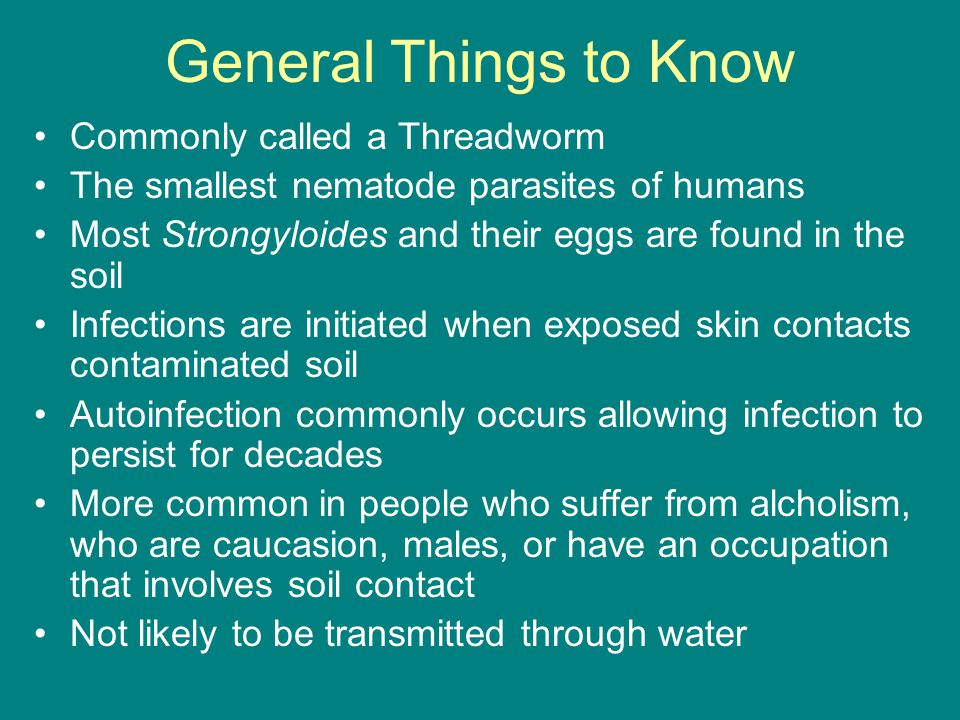 General Things to Know Commonly called a Threadworm