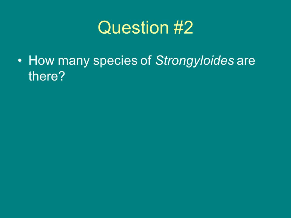 Question #2 How many species of Strongyloides are there