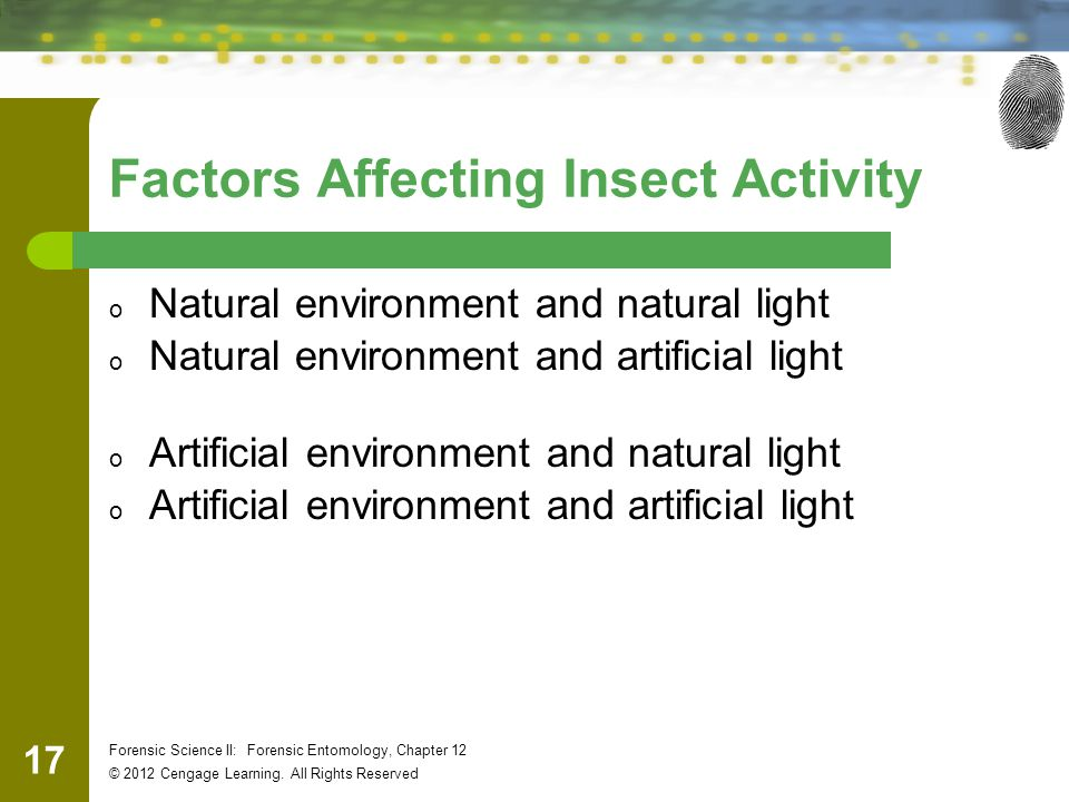 Factors Affecting Insect Activity