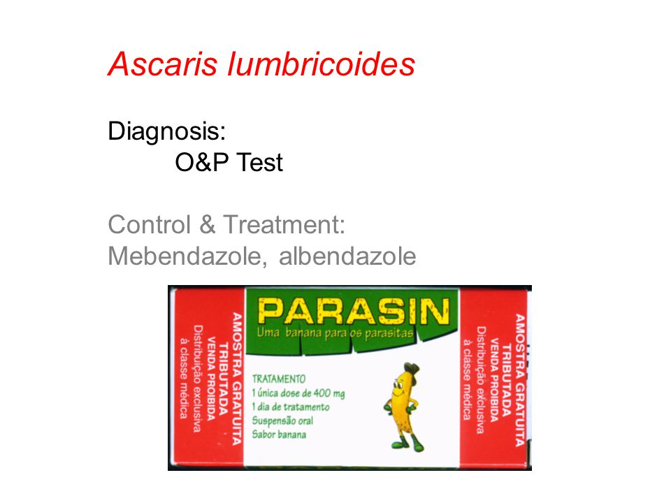 Ascaris lumbricoides Diagnosis: O&P Test Control & Treatment: