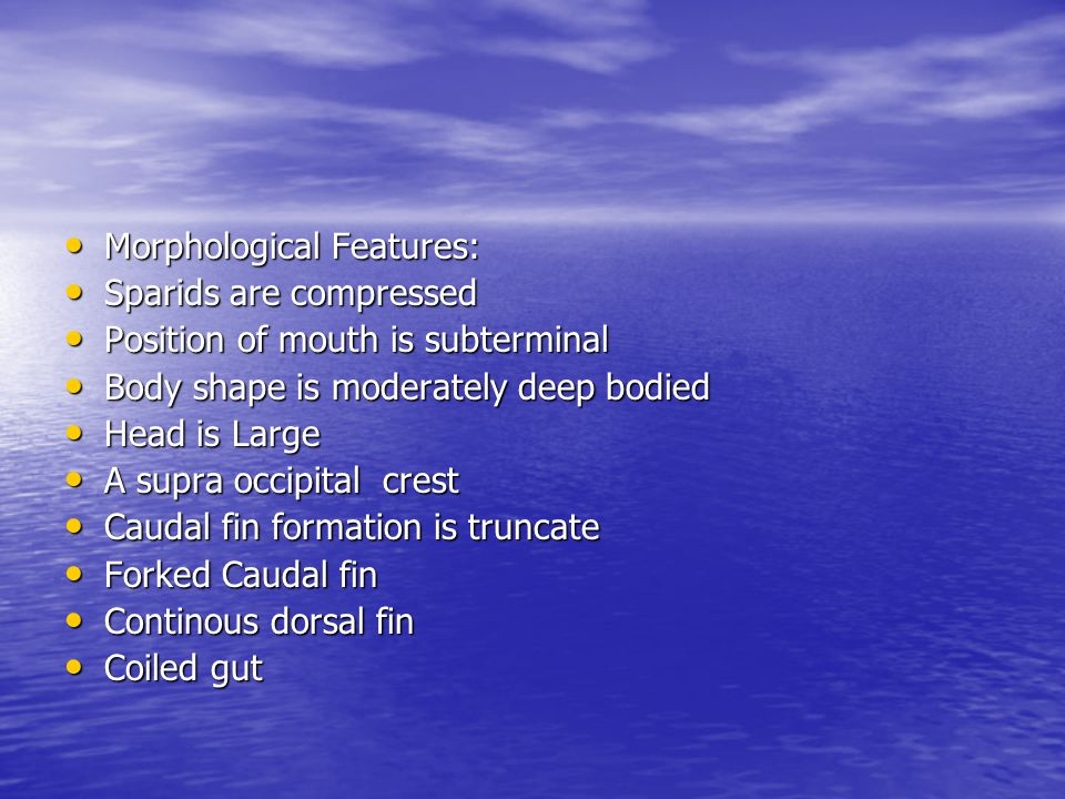 Morphological Features: