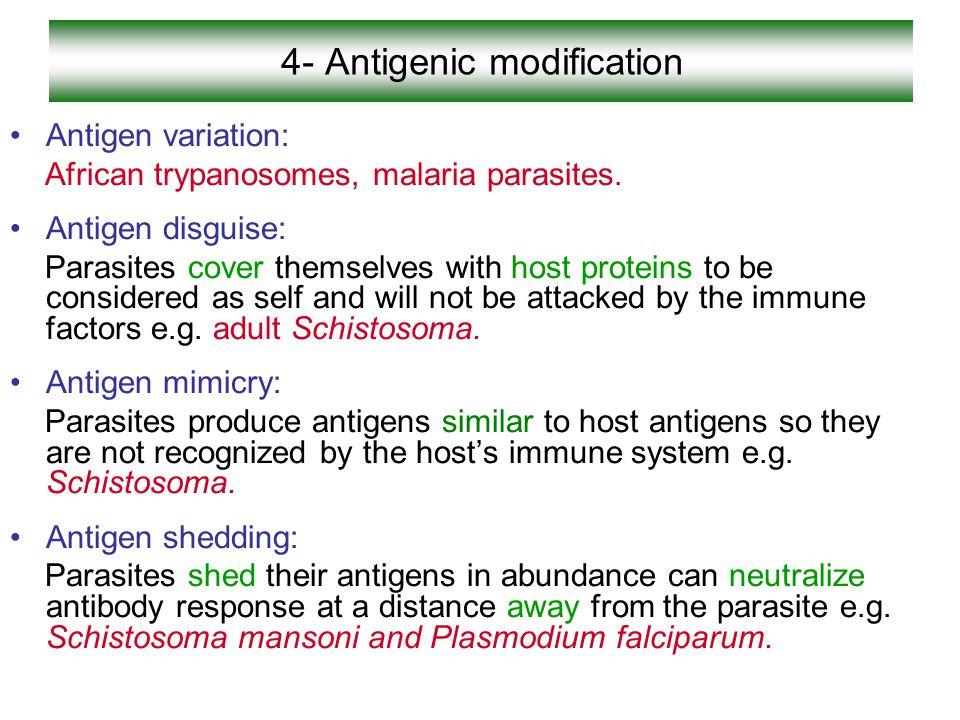 4- Antigenic modification
