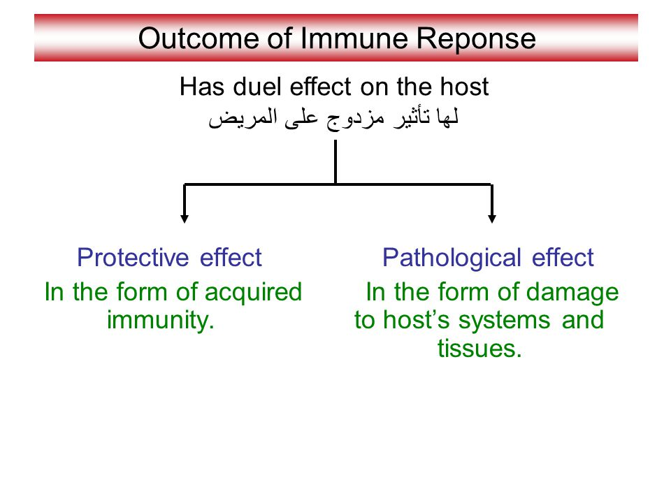 Outcome of Immune Reponse