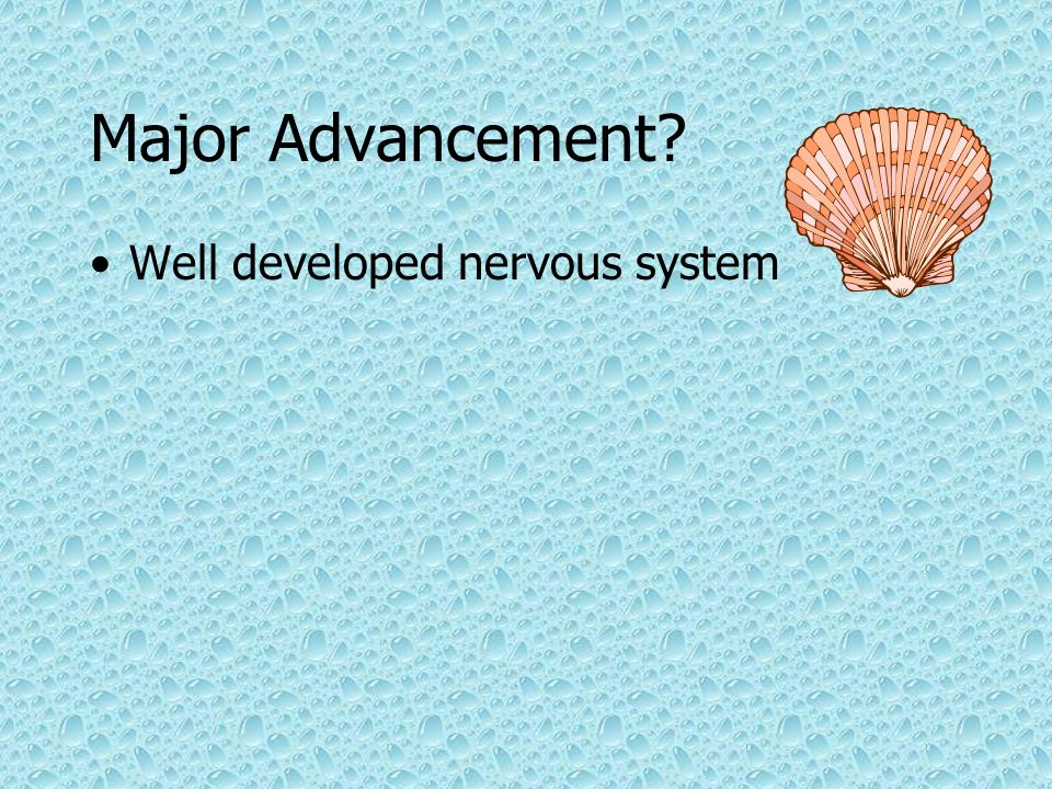 Major Advancement Well developed nervous system