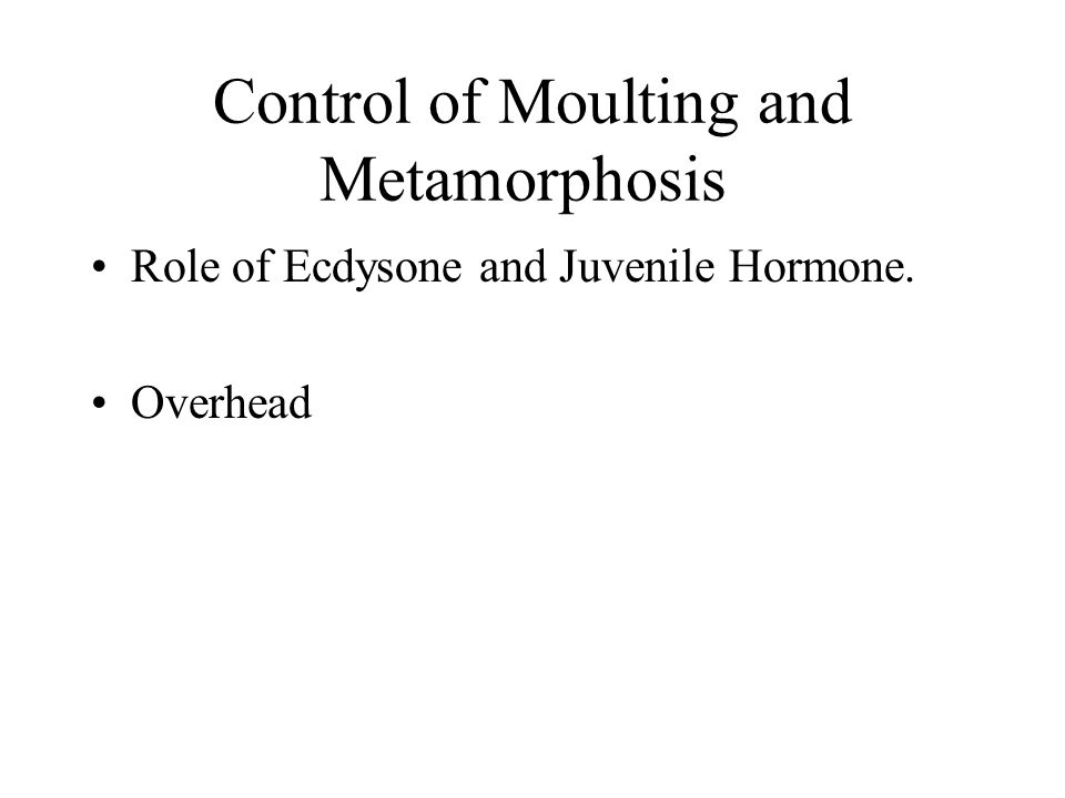 Control of Moulting and Metamorphosis