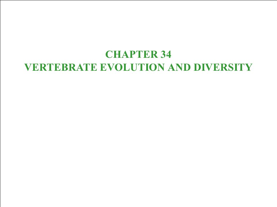 CHAPTER 34 VERTEBRATE EVOLUTION AND DIVERSITY