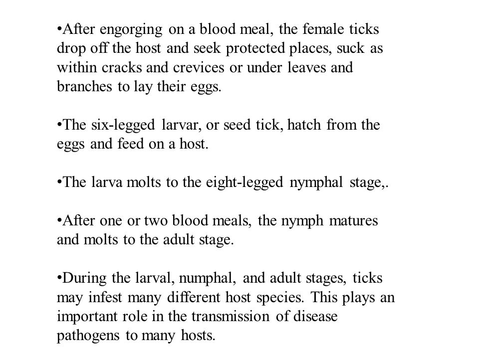 After engorging on a blood meal, the female ticks drop off the host and seek protected places, suck as within cracks and crevices or under leaves and branches to lay their eggs.