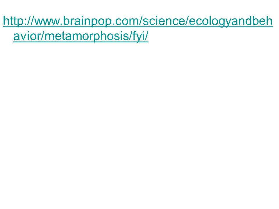 http://www.brainpop.com/science/ecologyandbehavior/metamorphosis/fyi/