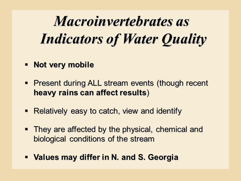 Macroinvertebrates as Indicators of Water Quality