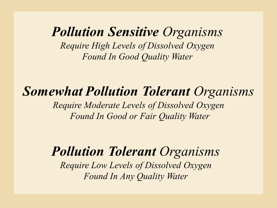 Pollution Sensitive Organisms Require High Levels of Dissolved Oxygen Found In Good Quality Water