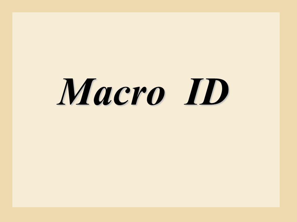 Macro ID