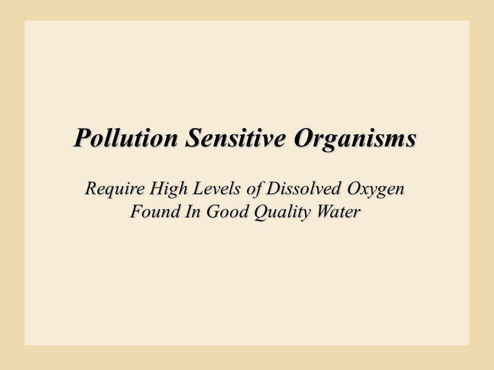 Pollution Sensitive Organisms