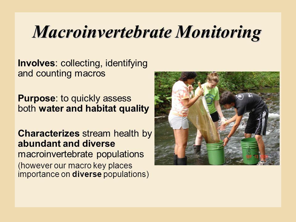 Macroinvertebrate Monitoring