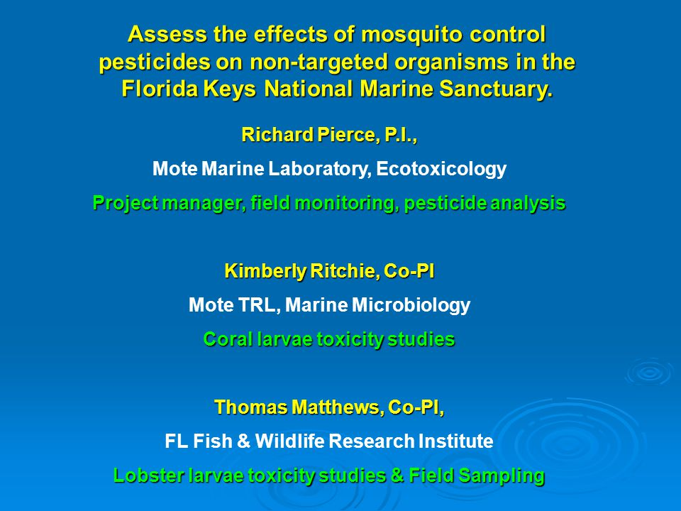 Assess the effects of mosquito control pesticides on non-targeted organisms in the Florida Keys National Marine Sanctuary.