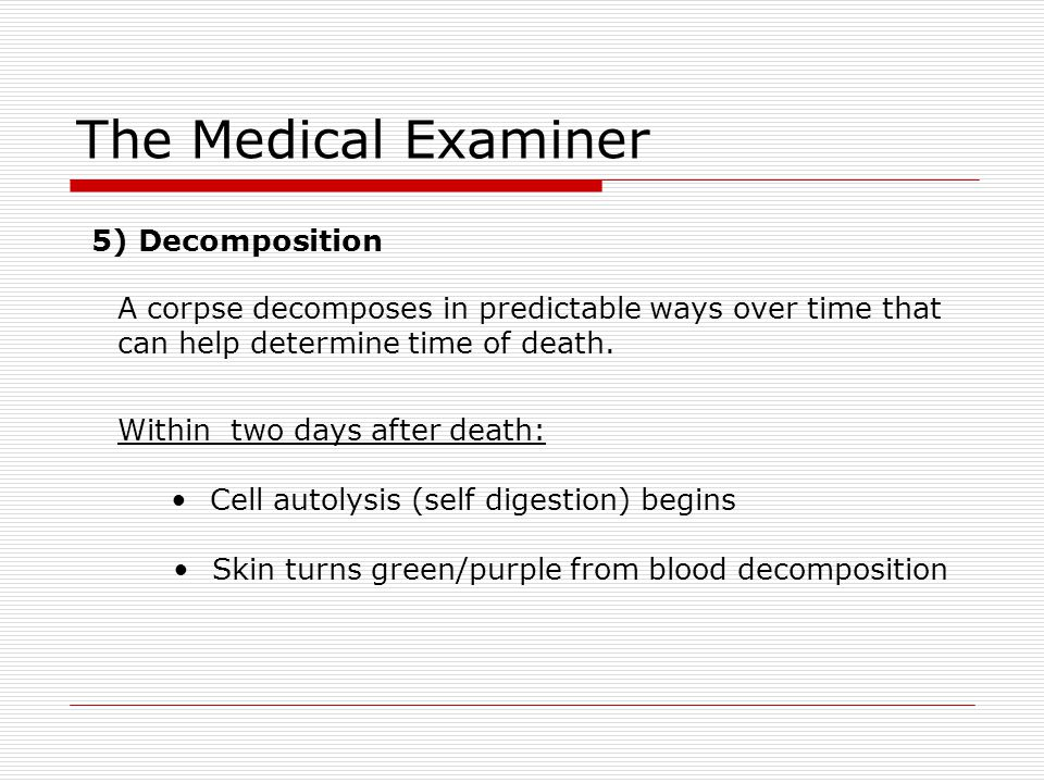 The Medical Examiner 5) Decomposition