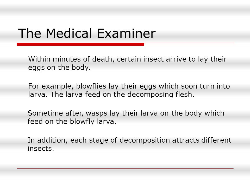 The Medical Examiner Within minutes of death, certain insect arrive to lay their. eggs on the body.