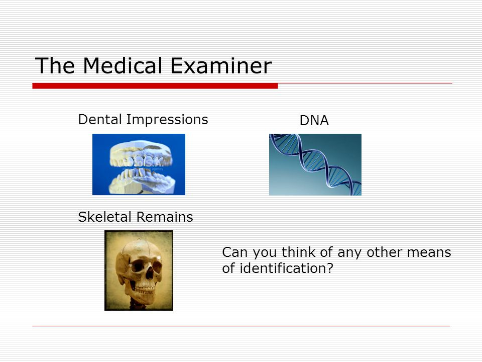 The Medical Examiner Dental Impressions DNA Skeletal Remains
