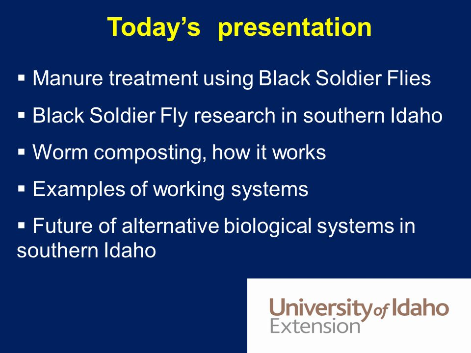 Today's presentation Manure treatment using Black Soldier Flies