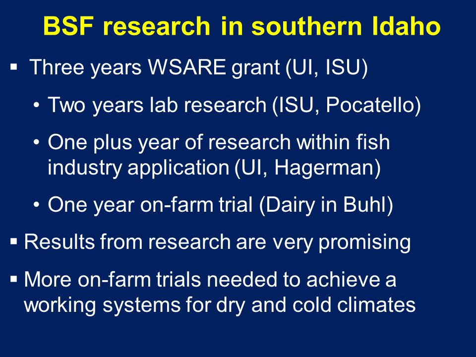 BSF research in southern Idaho