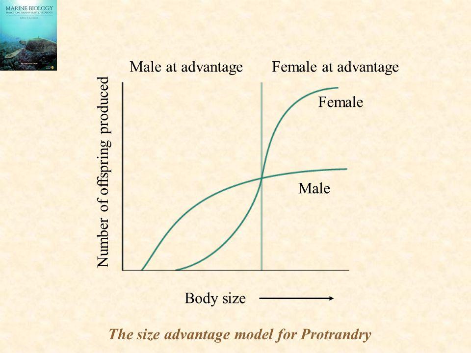 Male at advantage Female at advantage