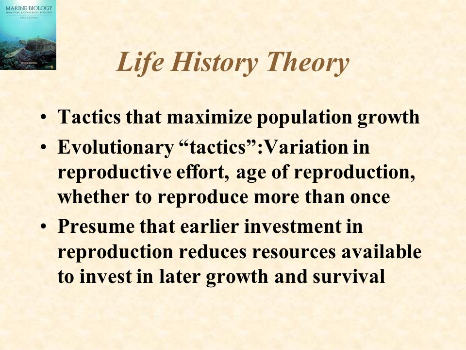 Life History Theory Tactics that maximize population growth