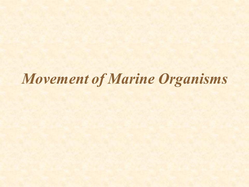 Movement of Marine Organisms