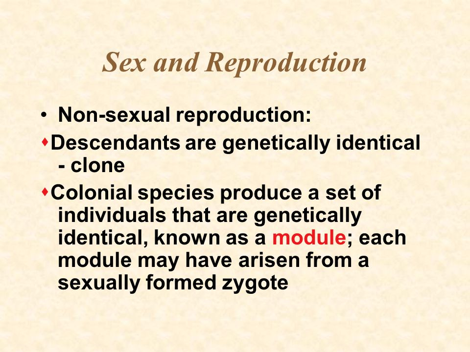Sex and Reproduction Non-sexual reproduction: