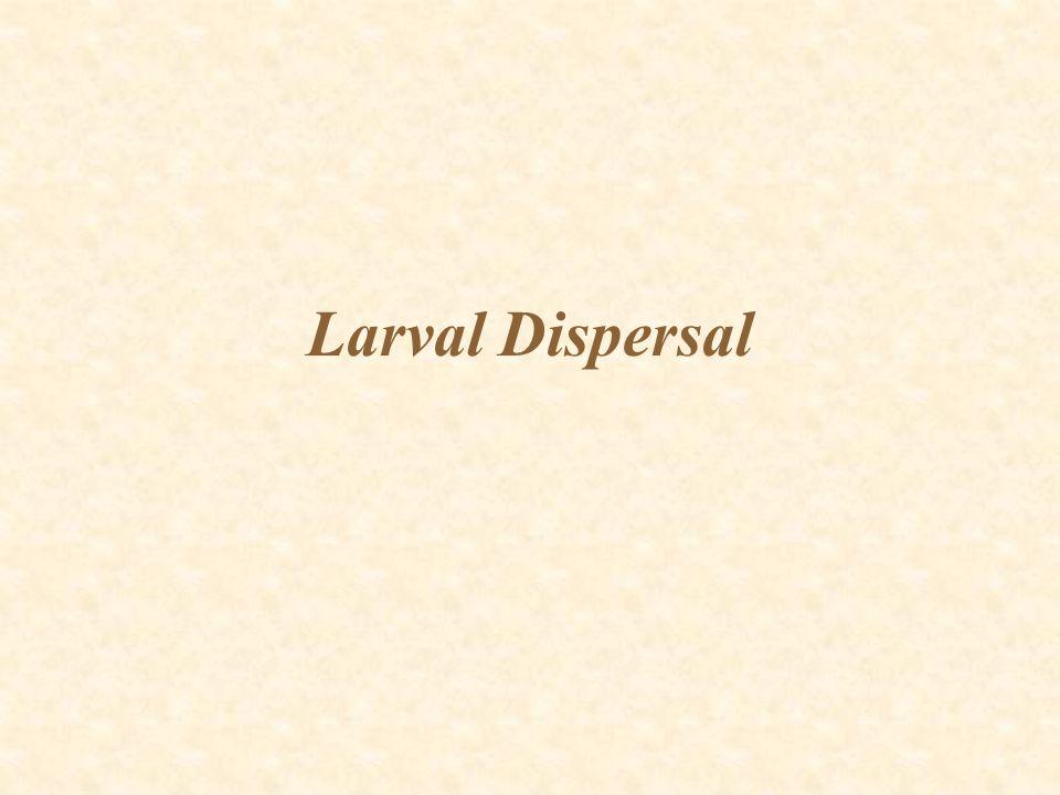 Larval Dispersal