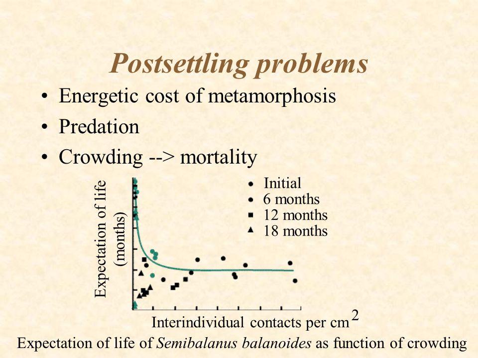 Postsettling problems