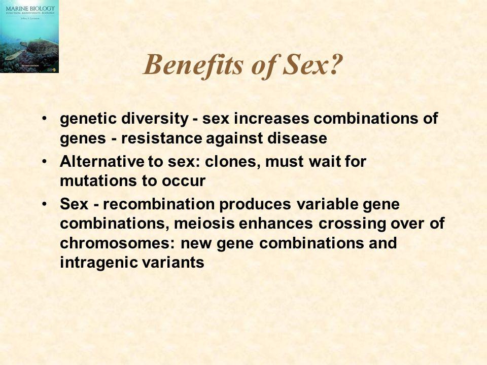Benefits of Sex genetic diversity - sex increases combinations of genes - resistance against disease.