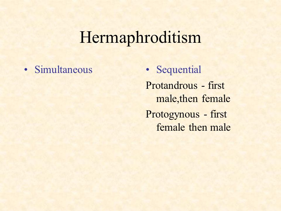 Hermaphroditism Simultaneous Sequential