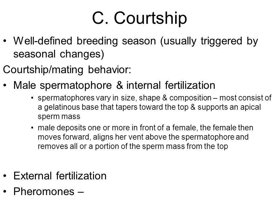 C. Courtship Well-defined breeding season (usually triggered by seasonal changes) Courtship/mating behavior: