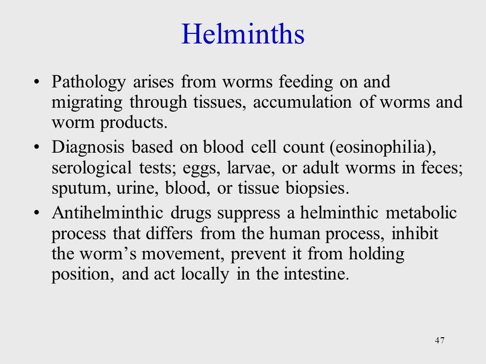 Helminths Pathology arises from worms feeding on and migrating through tissues, accumulation of worms and worm products.