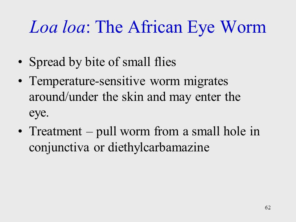 Loa loa: The African Eye Worm