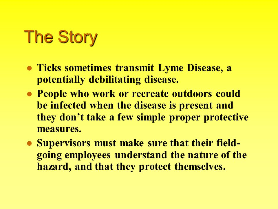 The Story Ticks sometimes transmit Lyme Disease, a potentially debilitating disease.