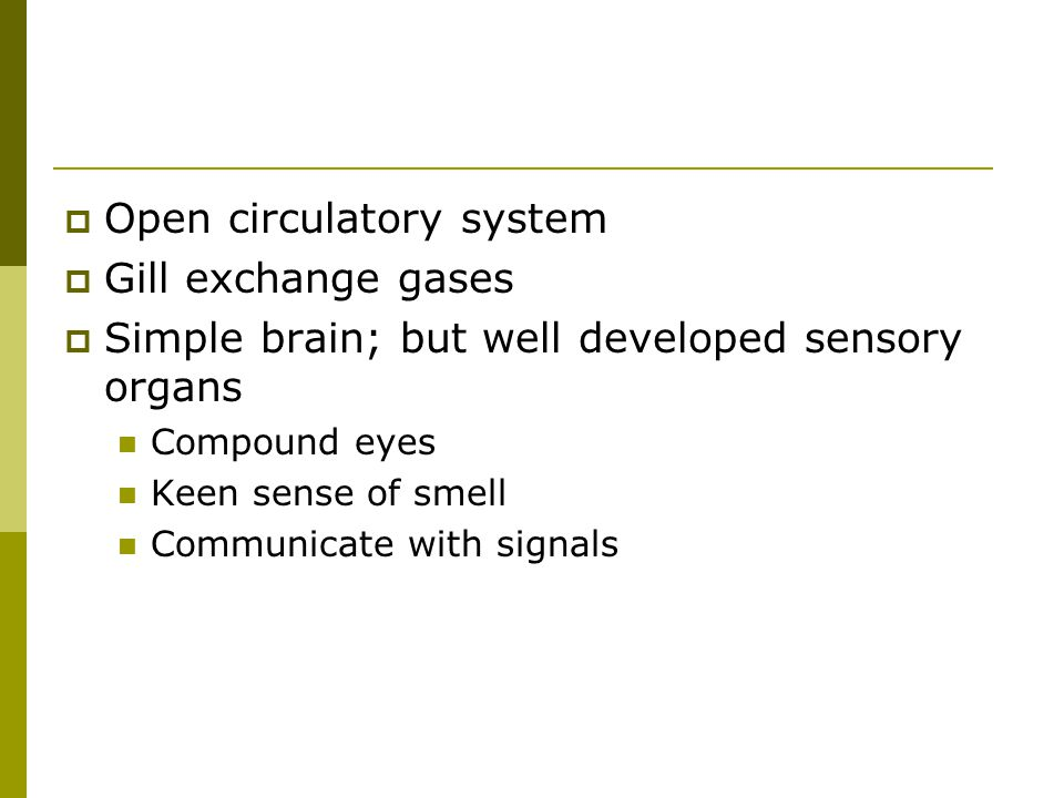 Open circulatory system Gill exchange gases