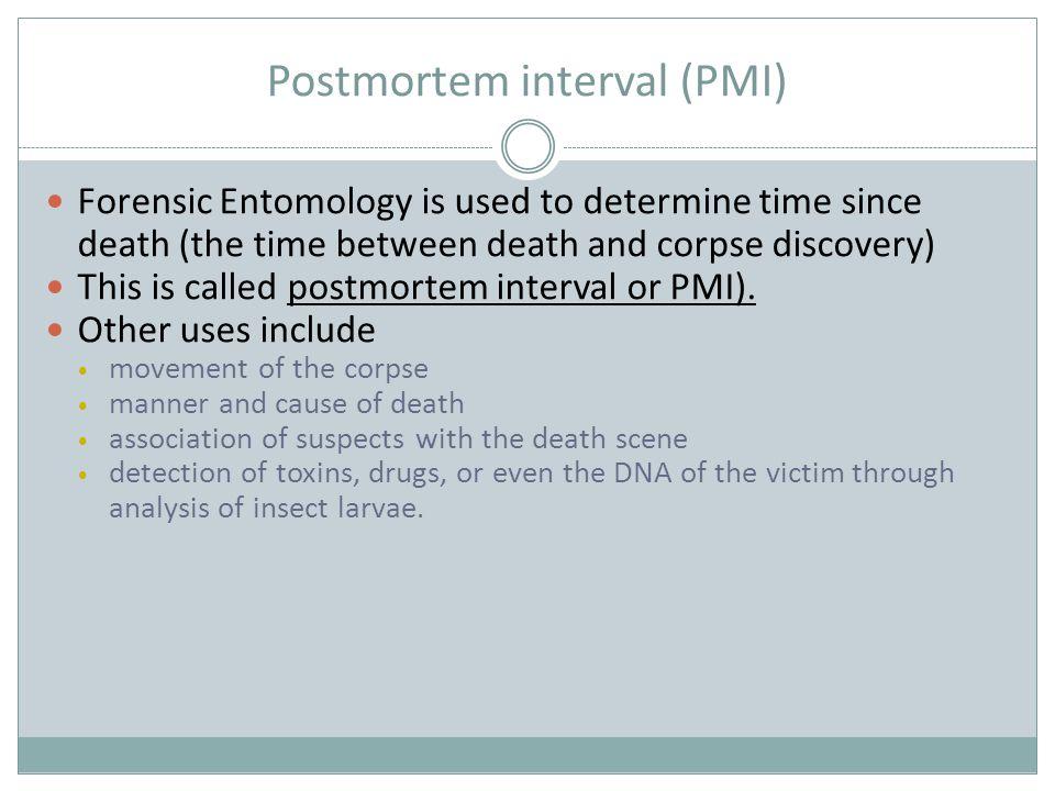 Postmortem interval (PMI)