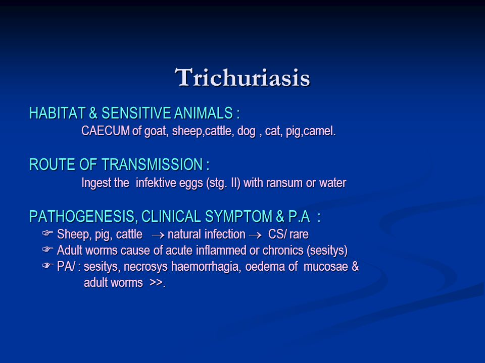 Trichuriasis HABITAT & SENSITIVE ANIMALS : ROUTE OF TRANSMISSION :