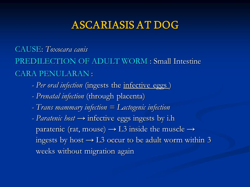 ASCARIASIS AT DOG CAUSE: Toxocara canis