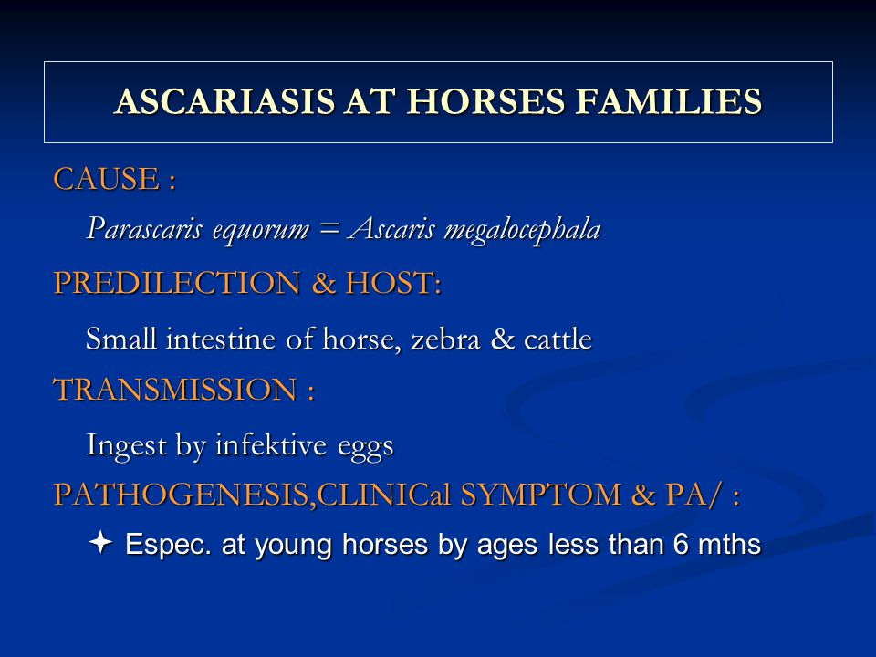ASCARIASIS AT HORSES FAMILIES