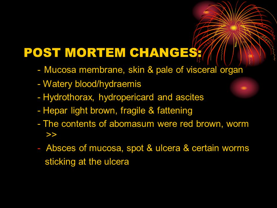 POST MORTEM CHANGES: - Mucosa membrane, skin & pale of visceral organ